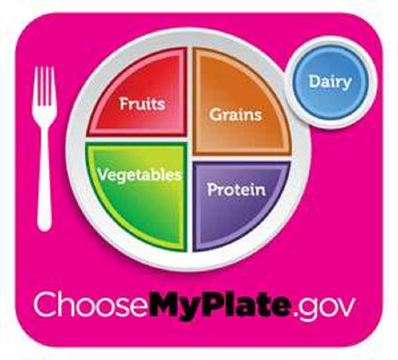by: SUBMITTED PHOTO  - One of the resources available on hbo.com/theweightofthenation is myplate, which illustrates the USDA recommended proportion of grains, protein, vegetables and fruits we should eat daily.