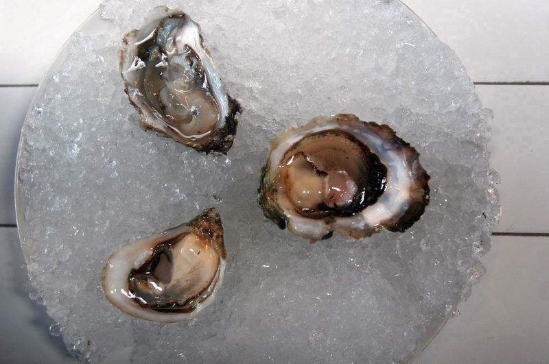 by: PAMPLIN MEDIA GROUP: CHRISTOPHER ONSTOTT - Carbon emissions are causing acidification of the ocean, which could harm the Northwest oyster industry.