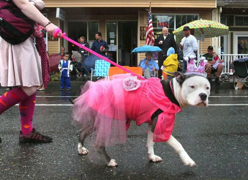 by: FILE PHOTO - Squishy walks in the 2011 SummerFest parade.