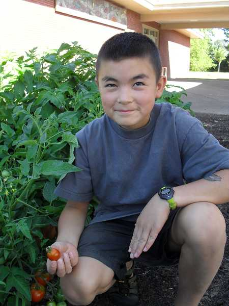 by: REVIEW PHOTO: BARB RANDALL -  Lake Grove fifth-grader Matthew Zimmerman is one of the students responsible for watering the school garden this summer. He also helps his dad, Mike Zimmerman, at the new garden being built at Lake Oswego Junior High.