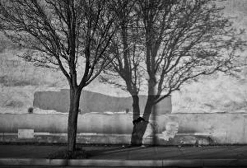 by: SUBMITTED PHOTO - Wall Shadow by David Burbach is on exhibit this month at the West Linn Public Library.
