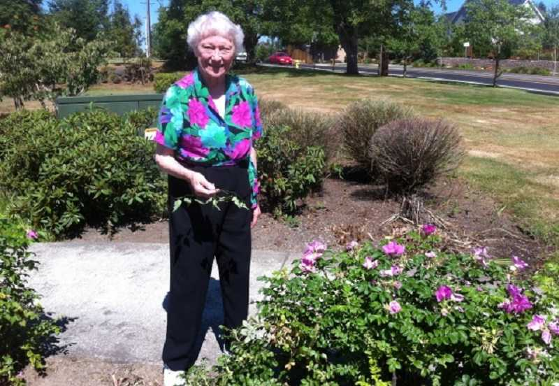 by: SUBMITTED PHOTO  - Betty Keyes goes after a weed at the WLACC.