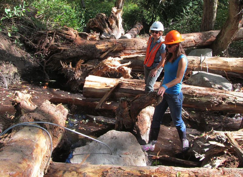 by: PHOTO BY ELLEN SPITALERI - Gail Shaloum, left, and Tonia Burns check the progress of a boulder and log arrangement that will create shady alcoves for fish in Mt. Scott Creek.