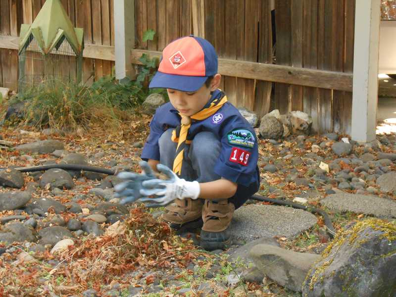by: JORDY BYRD  - Kogen Brown, 7, of West Linn and Cup Scout Pack 149 volunteers with Neighbors Helping Neighbors.