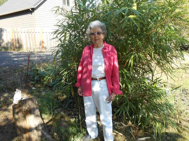 by: JORDY BYRD - Jeane Jones, 86, planted this bamboo 20 years ago. This is the third year volunteers from Neighbors Helping Neighbors have helped at her home.