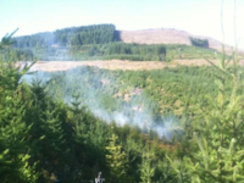 by: OREGON DEPARTMENT OF FORESTRY - Smoke rises from the fire in the Hagg Lake watershed