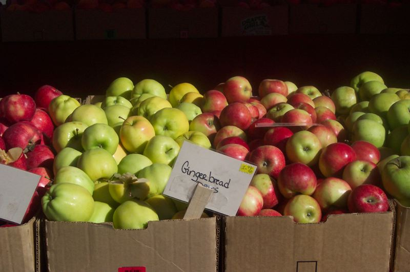 by: HILLSBORO FARMERS MARKET -  Fall is the perfect time to stock up on apples at Hillsboro's Saturday or Sunday farmers markets.