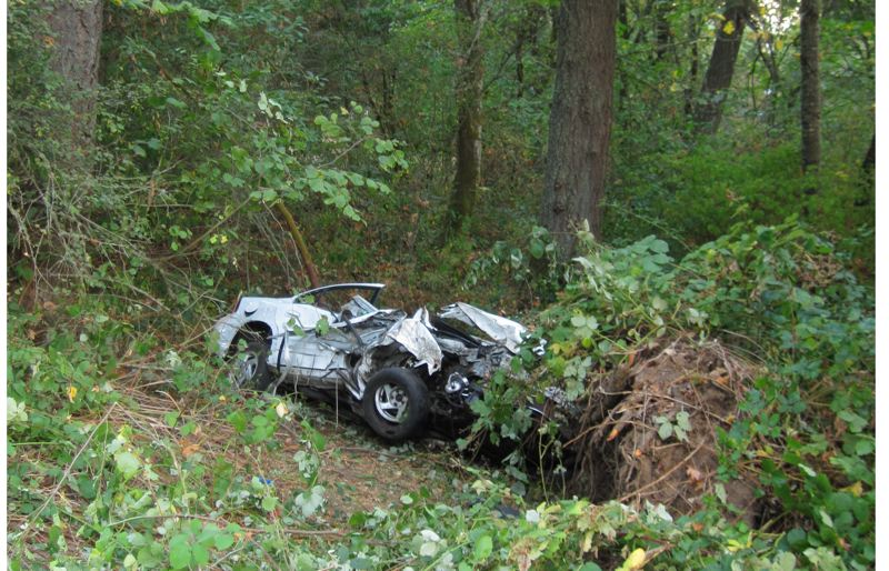 by: COURTESY OF WCSO - Remains of a heavily damaged 2000 Pontiac Grand Am rest near a tree on Gassner Road. A 20-year-old Forest Grove woman died in the early morning accident Oct. 6.