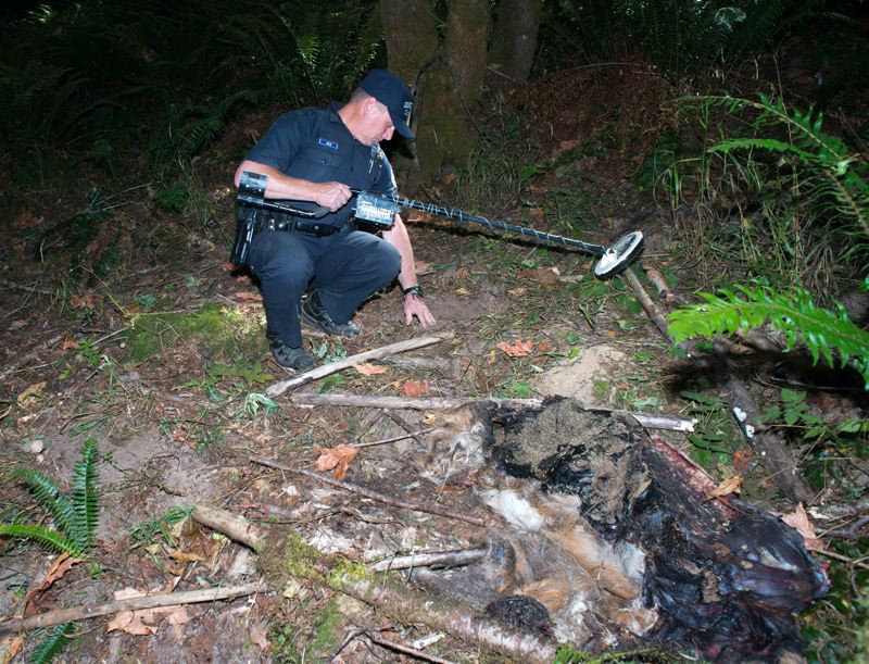 by: NEWS-TIMES PHOTO: CHASE ALLGOOD - Oregon State Trooper Roger Reid uses a metal detector to identify evidence of poaching like bullets and arrowheads.