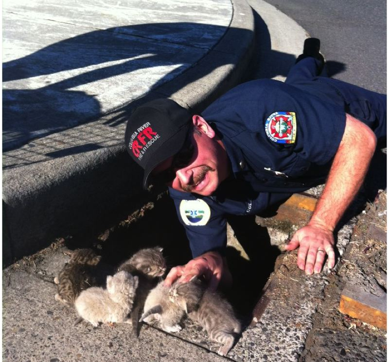 by: TOM MOUNG - Rainier firefighter and Mayor Jerry Cole happily poses Oct. 2 with a family of kittens he pulled to safety from a sewer drain.