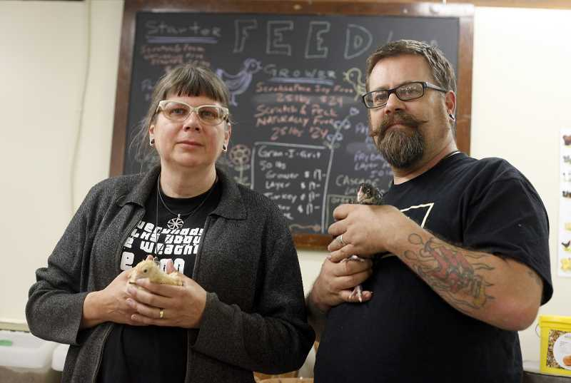 by: JONATHAN HOUSE - Julie and Dave Hobson show off their clucky feathered friends at their New Suburbia store on Southwest Broadway Street. The store sells chicks, along with organic feed, soil supplements and gardening supplies.