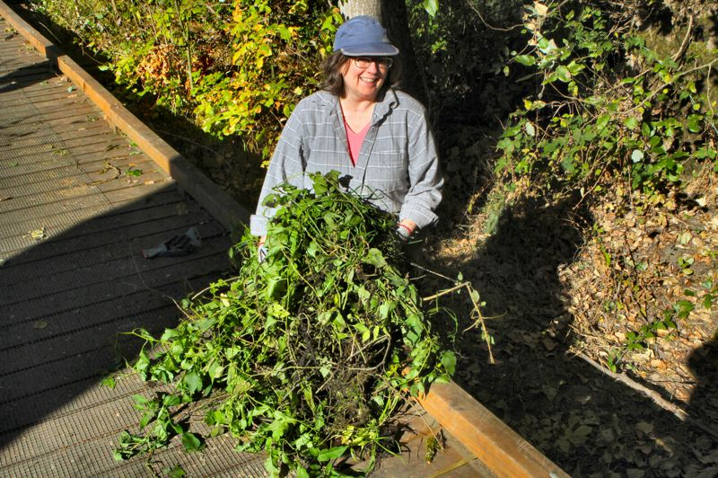 by: DAVID F. ASHTON - Holding a bundle of ivy is Marianne Colgrove, co-founder of Friends of Tideman Johnson Park.