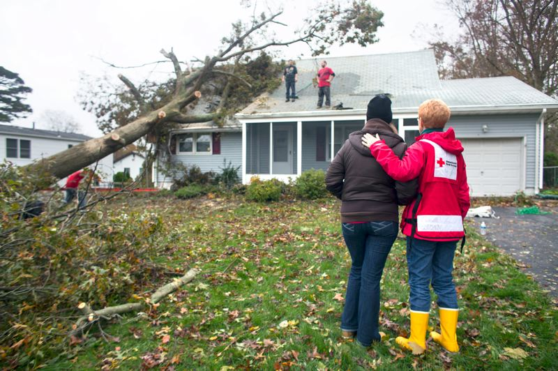 by: CONTRIBUTED PHOTO: LES STONE/AMERICAN RED CROSS - The oak that shaded this home on Avon Court in Toms River, N.J., for 70 years yielded to Hurricane Sandy Monday, just half an hour after Bridget Dowd and Ken Mantila evacuated to her parents home. Dowds neighbors pitched in Tuesday afternoon to trim the fallen monster down to size and get a tarp over holes in the roof. Knock on wood, the water damage is not too bad, Bridget told a Red Cross disaster volunteer.