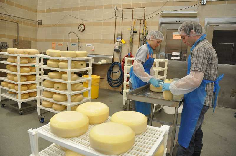 by: SUBMITTED PHOTO - Sstudents Ally Cooper and Tyler Linscott wash the rinds of the Beaver Classic cheeses during aging, a process that was done three times each week.