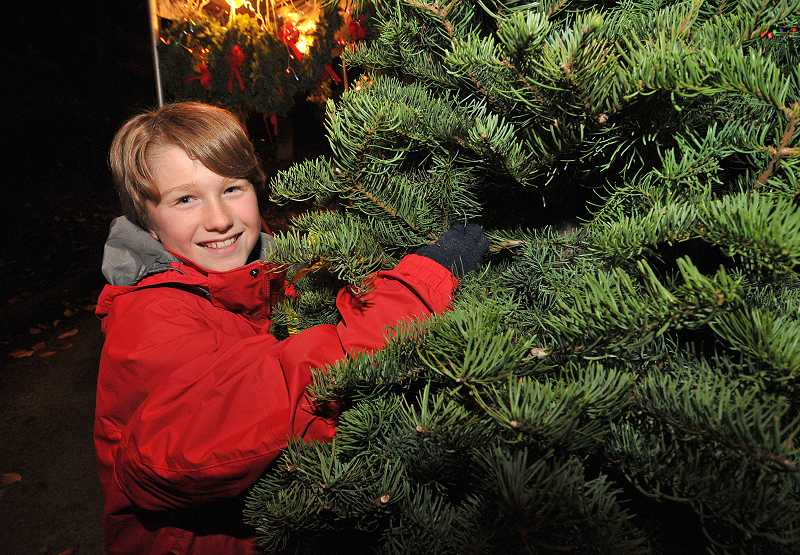 by: VERN UYETAKE - Noah Radcliffe with Boy Scout Troop 149 sets up the Christmas tree lot near the Bolton Primary School parking lot Nov. 26.