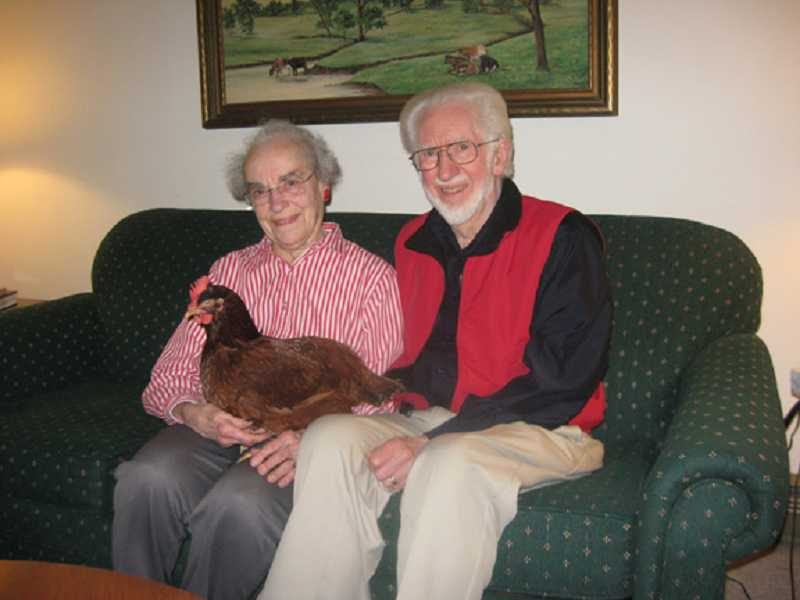 by: FILE PHOTO - COUPLE AMONG 8,000 FESTIVAL ATTENDEES - Isabel and Larry Torrey, shown in their King City living room with pet hen Red, were the subject of a story in the April 2012 Regal Courier.
