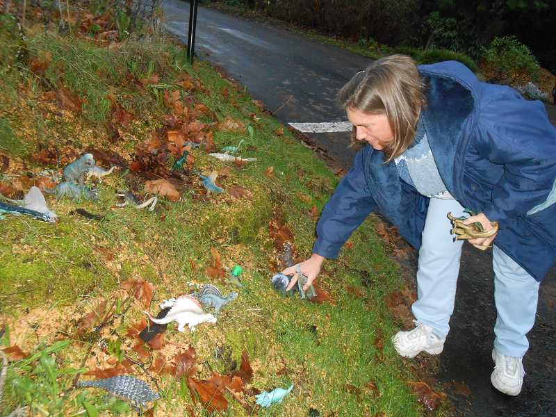 by: CLIFF NEWELL - Kathy Cody places all of the toy dinosaurs back at the base of what used to be the Dinosaur Tree so a great Lake Oswego tradition can continue.