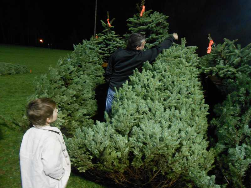 by: VERN UYETAKE - Trey Cox, a scout with Troop 127, answers questions about a tree from Monica Glumbik and her children, Ty and Maya. The troops sales lot at George Rogers Parks has been in operation since 1947.