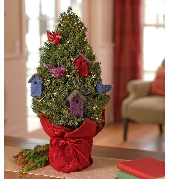 by: SUBMITTED PHOTO  - Use nature-inspired decorations that provide enjoyment throughout the holiday season and beyond.