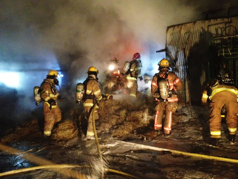 by: COURTESY PHOTO: FOREST GROVE FIRE & RESCUE - Firefighters extinguish hot spots at a barn on Springhill Road. Far from a municipal water system, the fire required water tenders  to supply the hoses.