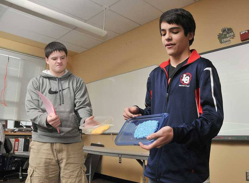 by: REVIEW PHOTO: VERN UYETAKE - Students Aidan Kelly, left, and Cole Sher-Jan created a business called Painting Perfection, which allows customers to virtually see how the paint job they envisioned would actually look completed.
