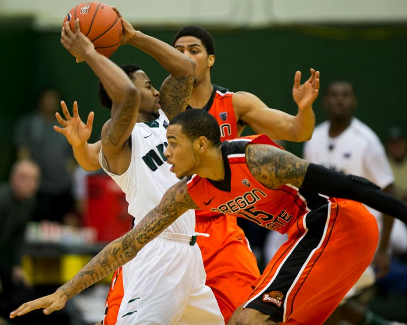 by: TRIBUNE PHOTO; CHRISTOPHER ONSOTT - Portland State point guard Lateef McMullan fends off an Oregon State double-team at Stott Center Wednesday night. Oregon State won 79-74.