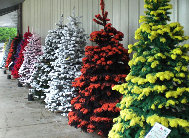 by: OUTLOOK PHOTO: ANNE ENDICOTT - Colored flocked Christmas trees are a new addition to holiday greenery at Drake's 7-Dees.