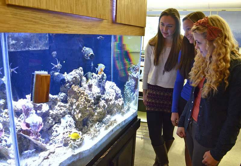 by: VERN UYETAKE - Students observe the fish take in their classroom.