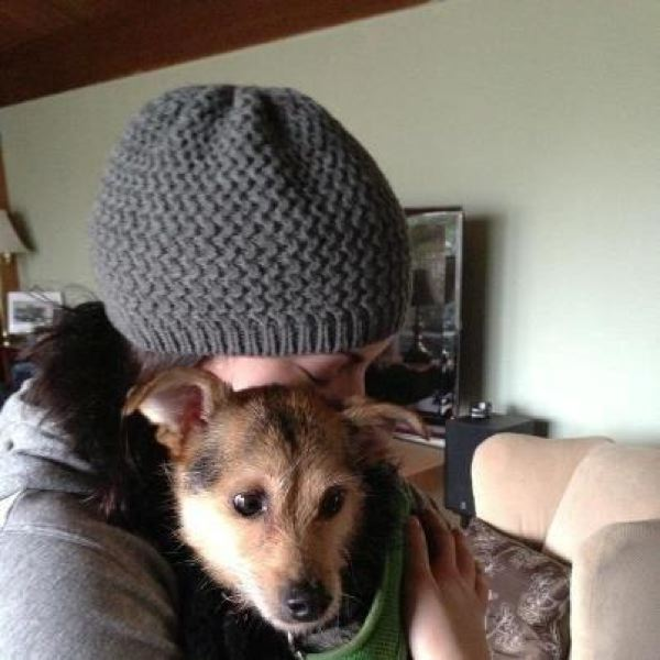 by: COURTESY OF NICOLE WEIR - Nicole Weir hugs her 15-pound dog Rico, who was missing for a day after running from a Saturday evening collision that smashed Weir's Toyota.