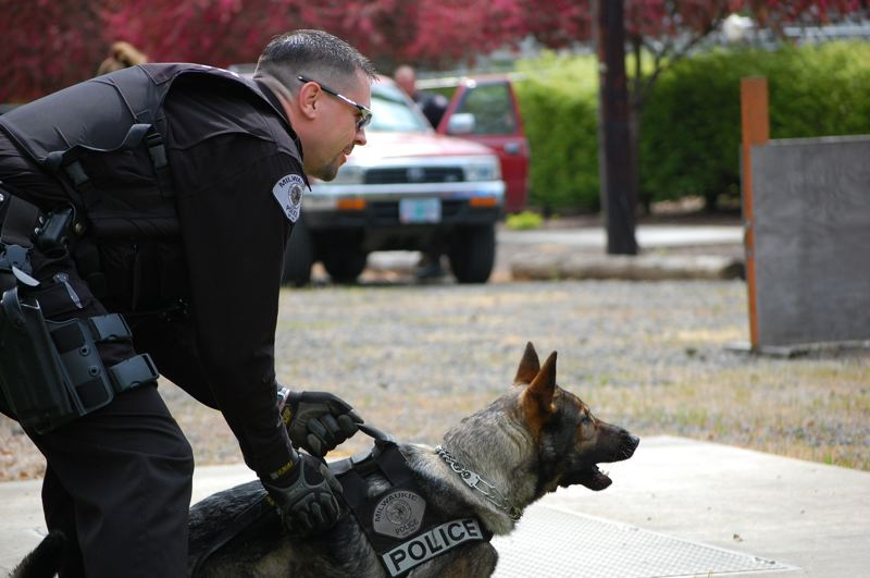 by: PHOTO COURTESY: MILWAUKIE POLICE DEPARTMENT - This file photo shows Jag training with K9 officer Scott Huteson. Jag had to be euthenized in December 2012.