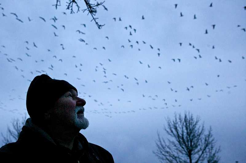 by: JAIME VALDEZ - Steve Runnels was part of 2012's Christmas bird count, which brought out record numbers of volunteers.