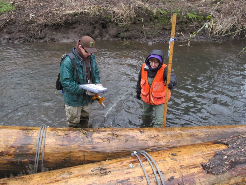 by: PHOTO BY ELLEN SPITALERI - Dave Stewart, a stream-restoration biologist with the Oregon Department of Fish and Wildlife, and WES's Gail Shaloum, check out the large woody debris in Mt. Scott Creek.