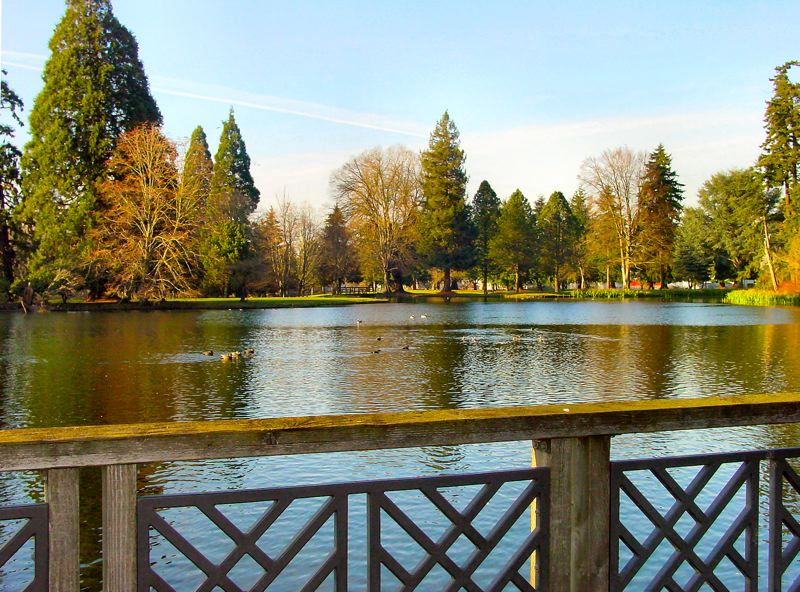 by: MERRY MACKINNON - The dam at the Eastmoreland Golf Course which forms this lake is failing, and it will either be repaired or removed. If it's removed, then the lake at Crystal Springs Rhododendron Garden, which was created when the dam was constructed, would be drained.