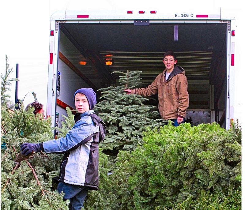 by: DAVID F. ASHTON - Boy Scouts Garrett Neuman and Grant Parsons, of Troop 64, unload trees at Holy Family Catholic School's west yard on S.E. 36th Avenue.