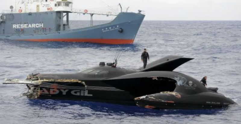 by: COURTESY OF EARTHRACE - The 78-foot trimaran Ady Gil chartered by the Sea Shepherd Conservation Society of Friday Harbor, Wash., was damaged during a January 2010 collision with a Japanese whaling vessel near Antarctica. The trimaran worth about $3 million sank after the collision.