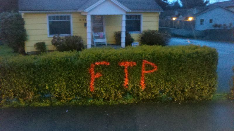 by: ST. HELENS POLICE DEPARTMENT - The vandals did not discriminate in where they placed the graffiti, spraying the orange paint on bushes as well as buildings and street signs.