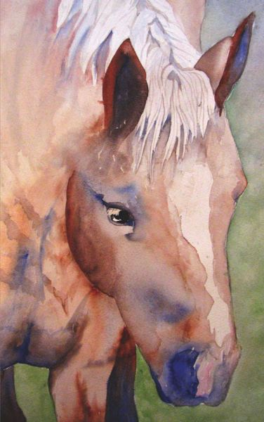 by: COURTESY: LINDA MERRY GROSS - Tara Choate - watercolor horse