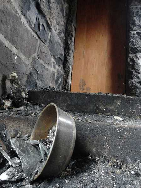 by: ASHLEY ADAMS - Colby, one of the family's dogs, alerted the Cosners of the fire by scratching at the home's back door.