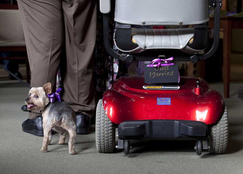 by: TIMES PHOTO: JONATHAN HOUSE - Mary Evans' pooch 'Boss' was part of the wedding ceremony at Creekside Village in Beaverton.