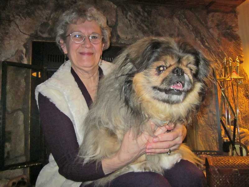 by: BARBARA SHERMAN - THE STARS WERE ALIGNED THE DAY THEY MET - Rita Loberger fell in love with Dachi the moment she saw him in a pet shop in 2000.