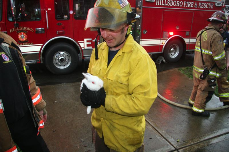 by: HILLSBORO FIRE AND RESCUE - A Hillsboro firefighter with a family's bunny rescued from a March 5 house fire.
