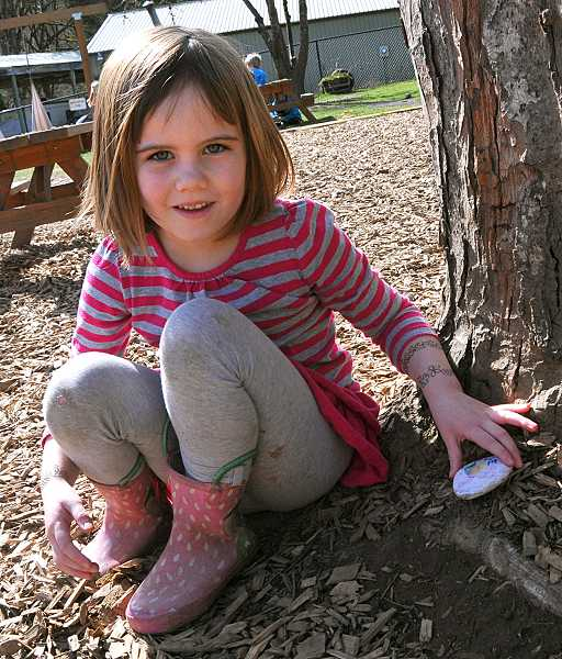 by:  VERN UYETAKE - Heart Centered Montessori student Charlie An places her rock near a tree in the school's play area.