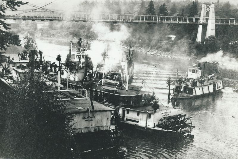 by: PHOTO COURTESY: CLACKAMAS COUNTY HISTORICAL SOCIETY - Steamships gather on the Willamette River between Oregon City and West Linn. The vessels could carry up to 500 tons of cargo.