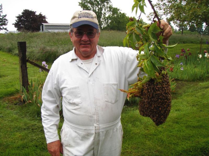by: COURTESY PHOTO - Jerry Maasdam of Hillsboro shows off one of his hives. He's been keeping bees since 2006 and knows a thing or two about the hobby.