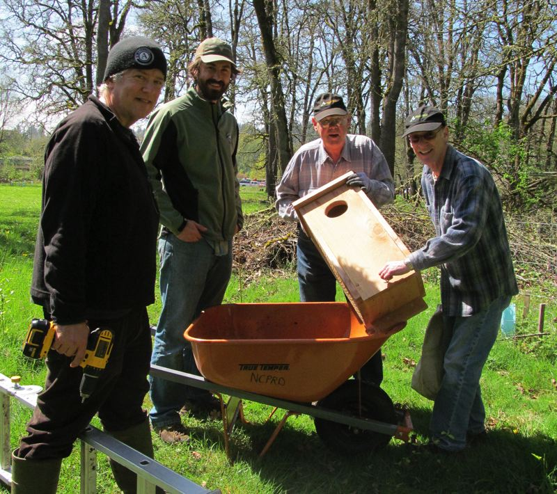 by: PHOTO BY ELLEN SPITALERI - From left, Phil Clark, Jeff Lesh, Dick Shook and Steve Berliner prepare to put up a bird box at North Clackamas Park last year on Earth Day.