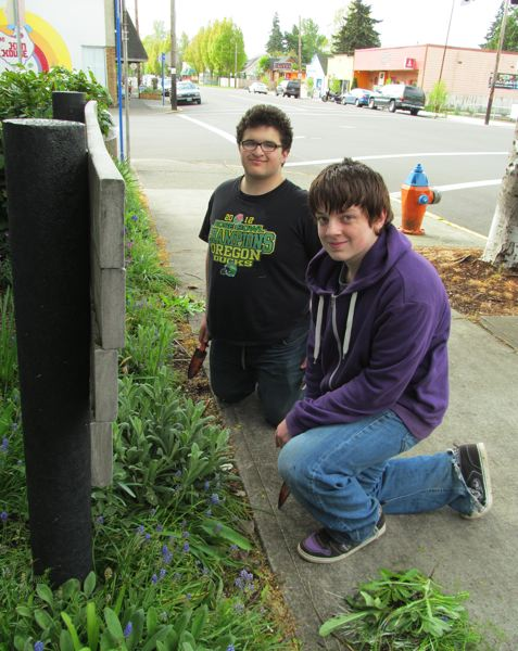 by: PHOTO BY ELLEN SPITALERI - Jacob Sumner, 15, and Mohammed Zaidan, 16, both members of Oregon City High School's JROTC program, removed weeds outside of Gladstone City Hall.
