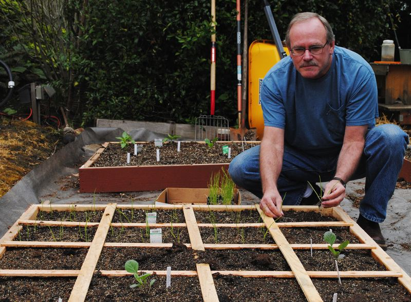 by: NEWS-TIMES PHOTO: STEPHANIE HAUGEN - Steve Harris of Hillsboro, a frequent traveler who couldn´t keep up with a traditional garden, finished planting his square-foot garden boxes last weekend.