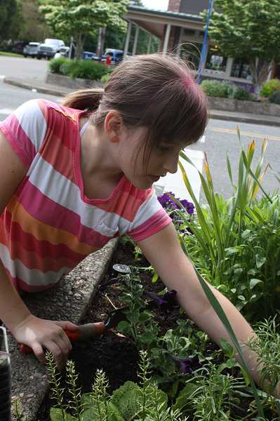 by: TIDINGS FILE PHOTO: LORI HALL - Emily Swenson, 10, and her family have taken care of a planter in historic Willamette for the last seven years.