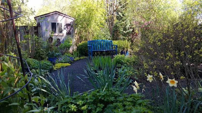 by: SUBMITTED PHOTO - One of several gardens featuring clematis in the Portland metropolitan area that will be viewable to participants in the Inviting Vines VI garden tour May 25.