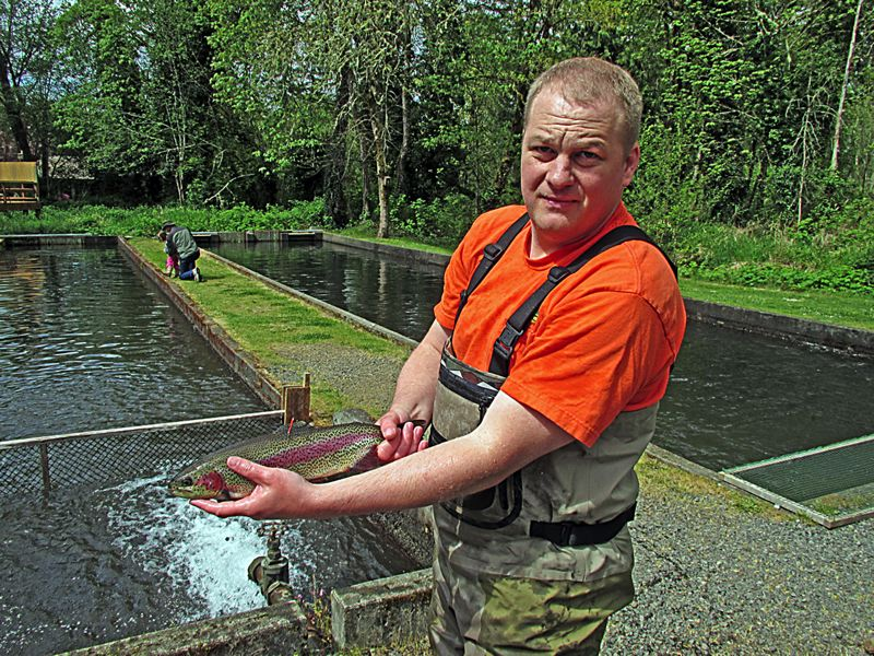 by: COURTESY PHOTO: OREGON DEPARTMENT OF FISH AND WILDLIFE - ODFW Fish Biologist Ben Walczak holds one of the tagged rainbow trout which could give some lucky angler a prize if caught during the Fish for Millions contest sponsored by Cabelas. Contest runs from now through July 7.